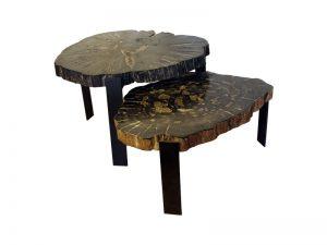 petrified-wood-coffee-table-02