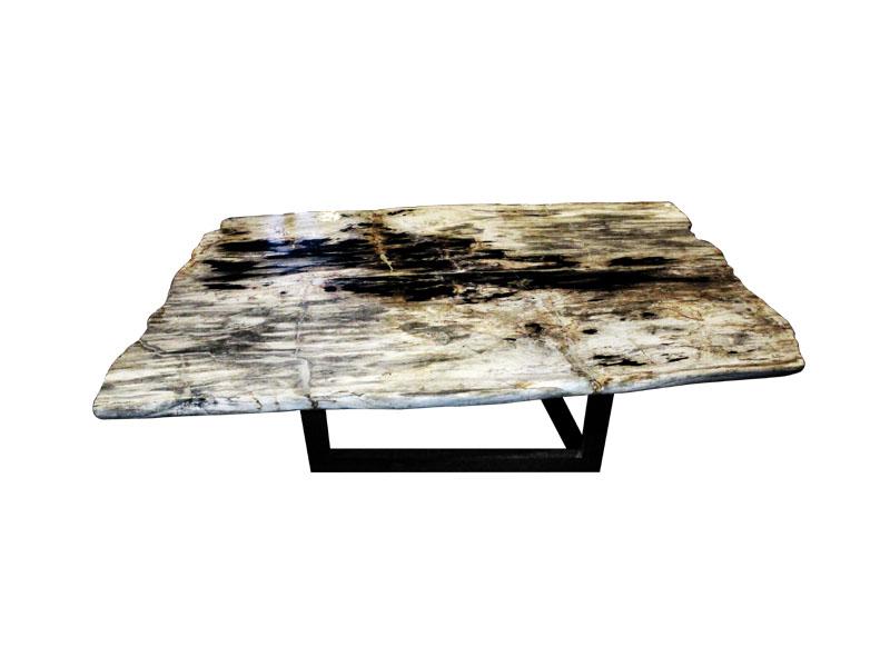 petrified-wood-coffee-table-13